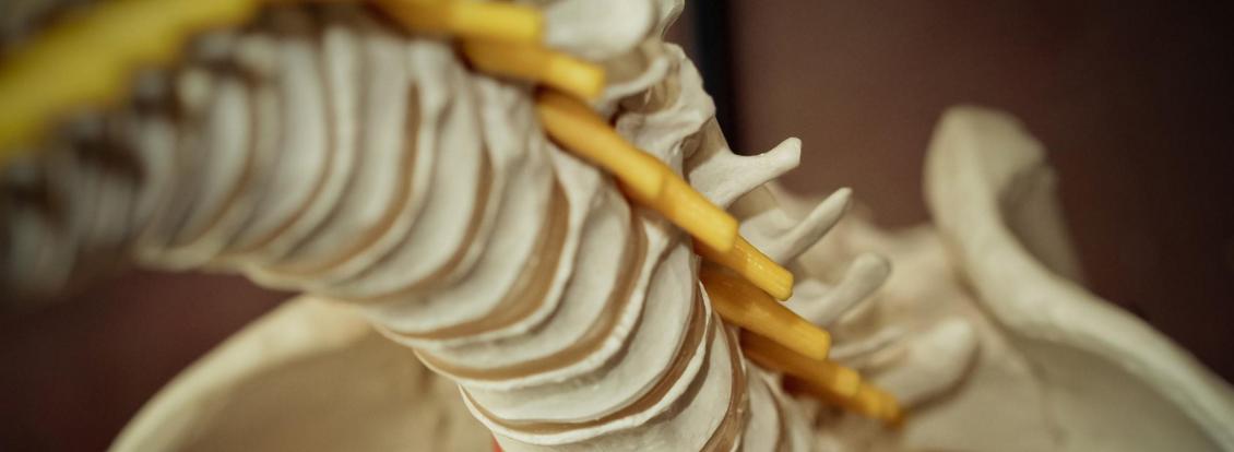 Mythes et réalités sur la chiropratique - 2e partie